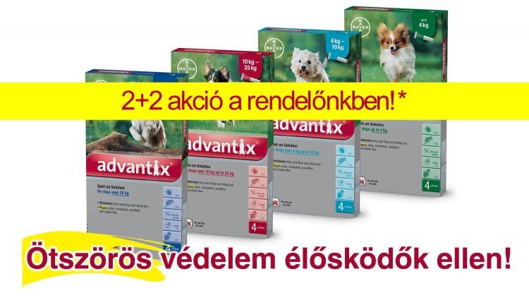 Advantix – 2 hónap ajándékba