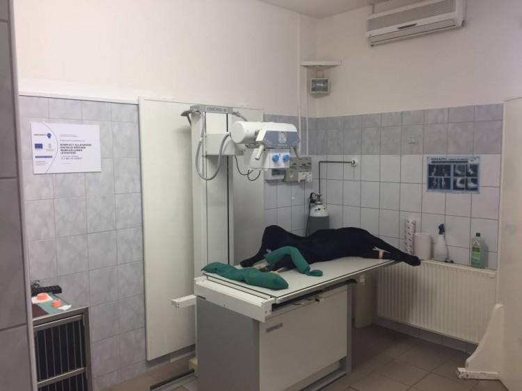 Komplett digitális állatorvosi röntgen munkaállomás az Állatkórházban!